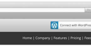 WordPress-Connect-option